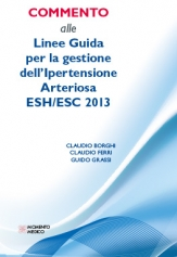 COMMENTARY TO 2013 ESH/ESC GUIDELINES ON ARTERIAL HYPERTENSION