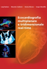 REAL-TIME THREE-DIMENSIONAL ECHOCARDIOGRAPHY